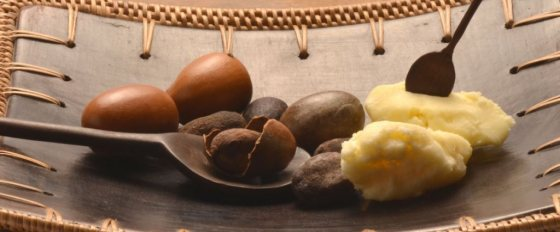 50 uses of Shea Butter!